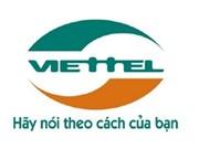 越南许多大型企业进入非洲市场