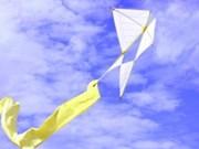 第三届国际风筝节将在越南巴地头顿举行