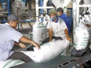 韩国大米进口企业关注越南大米