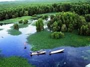 三海湖成为越南第三个湿地区
