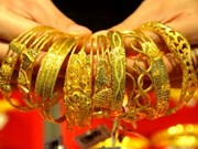 国内黄金价涨至4750万越盾/两创历史新高纪录