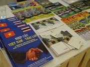 越南参加加强地区各省市关系的国际会议