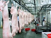 越南最大食品加工工业区动工兴建