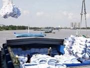 今年1月份越南大米出口量达27.9万多吨