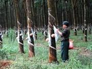 2011年越南在柬投资的东盟国家中居于首位