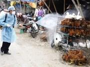 各国际组织协助提高越南禽流感风险评估能力