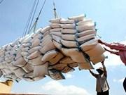 越南香米占领亚洲许多大市场