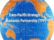 越南强调跨太平洋伙伴关系协定的利益平衡