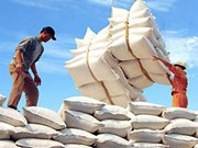越南出口大米注册合同量猛增