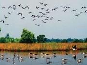 越南同塔鸟栖国家公园成为越南第4处国际重要湿地