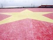越南一面陶瓷国旗创越南最大国旗纪录