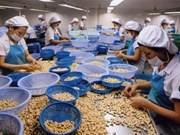 越南腰果出口金额保持增长势头
