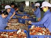 越南转基因粮食作物还在实验期