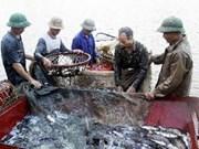 越南首都河内经济保持较快增长势头