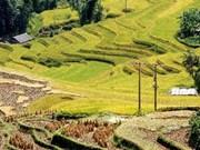 宣光省和东北部各省着重发展旅游业