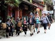 越南接待国际游客日益增多