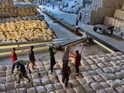 泰媒: 越南成为世界第一大大米出口国