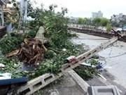 越南努力克服8号台风造成的后果