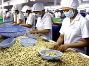 2012年越南经济增长论坛在河内举行