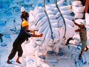 今年越南大米出口量创历史新高