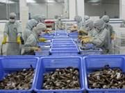 2013年越南虾类出口总额有望达24亿美元