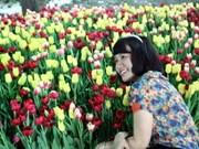 题为《国势与民心》癸巳春节花市展销会在胡志明市开幕