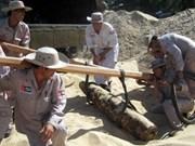 德国继续协助越南展开扫雷工作