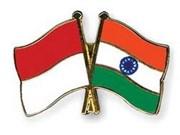 印尼与印度加强南南合作