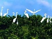 薄辽鸟类公园实现可持续管理