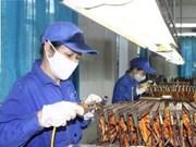 越南同奈和平阳两省重视照顾女工人生殖健康