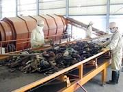 越南自主研发垃圾焚烧和热回收技术