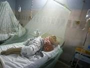 新加坡:登革热病例增数创6年来新高