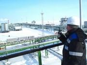 越南企业大批境外投资项目增资