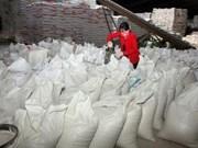 菲律宾将从越南进口18.7万吨大米