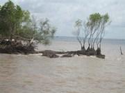 JICA协助越南九龙江三角洲应对气候变化