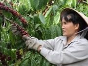 越南与日本国际协力机构确定农业为优先合作领域