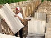 今年前5个月越南农林水产品出口额达107亿美元