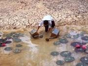 越南九龙江三角洲着力做好防旱抗旱工作