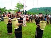 越南广南省戈都族欢庆新米节和团结节