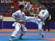 2013年越南青少年空手道国家锦标赛开赛