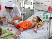 越南巴地—头顿省感染登革热病人数增多