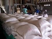 今年柬埔寨大米产量将保持去年水平