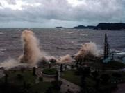 越南各省份积极主动应对7号台风