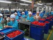 2015年河内市从事辅助工业领域中小型企业数量将达300家