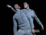 第三届国际舞蹈联欢会在河内隆重举行