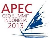 APEC峰会期间印尼将严惩扰乱分子