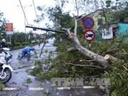 第十号台风袭击越南中部造成巨大损失