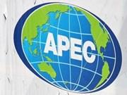 越南积极主动参加亚太经合组织论坛