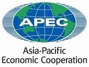 越南为APEC第21次领导人非正式会议成功举行作出积极贡献