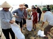 第11号台风来袭 越南中部3人死亡、2人失踪和27人受伤